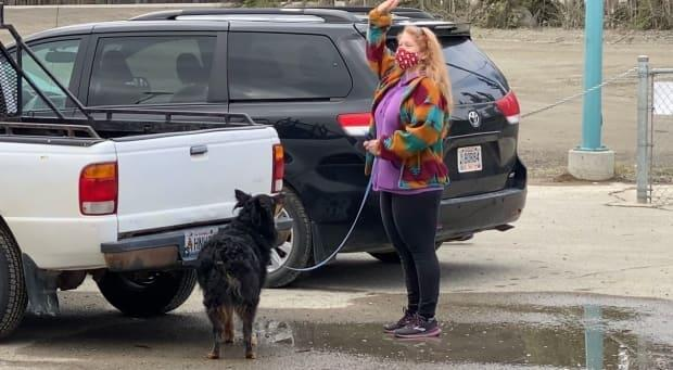 Dogs spent two days sniffing outhidden scents inside and outside at various locations. After a few minutes of searching, this fierce competitor located the scent. (Chris MacIntyre/CBC - image credit)
