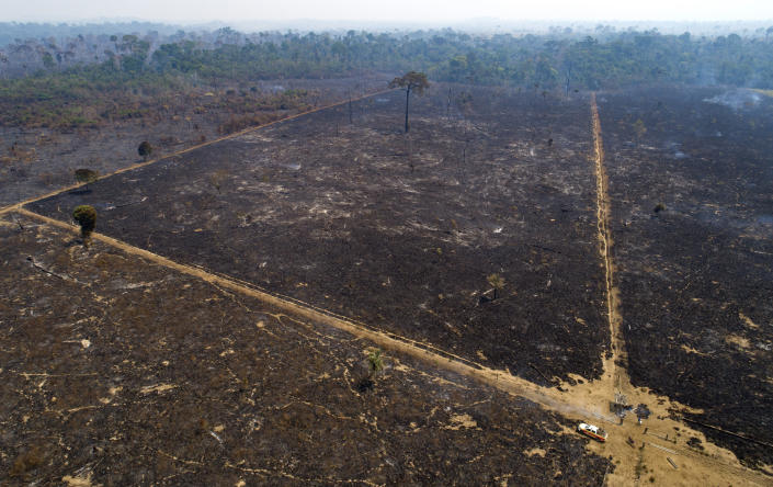 FILE - This Aug. 18, 2020 file photo shows an area consumed by fire and cleared near Novo Progresso in Para state, Brazil. A group of climate lawyers called Tuesday, Oct. 12, 2021 for the International Criminal Court to launch an investigation into Brazil's president for possible crimes against humanity for his administration's Amazon policies. (AP Photo/Andre Penner, file)