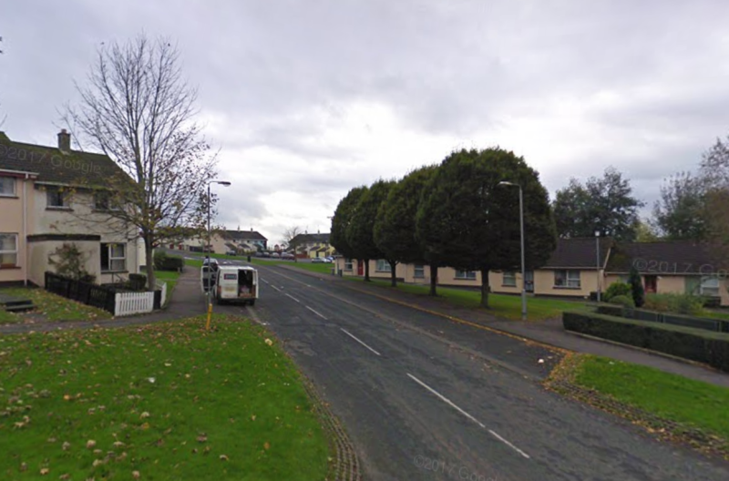 The shocking attack took place on Trasna Way in Lisnaskea. (Google Street View)