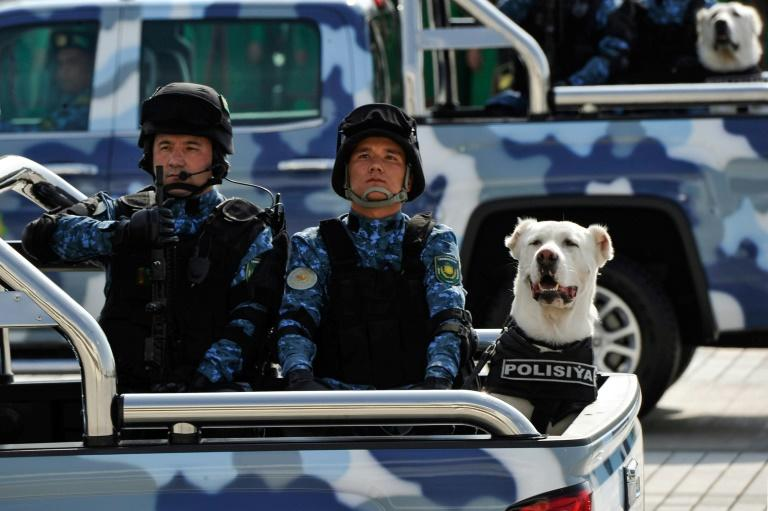 As well as working with the police and army, the dogs are bred for fighting tournaments