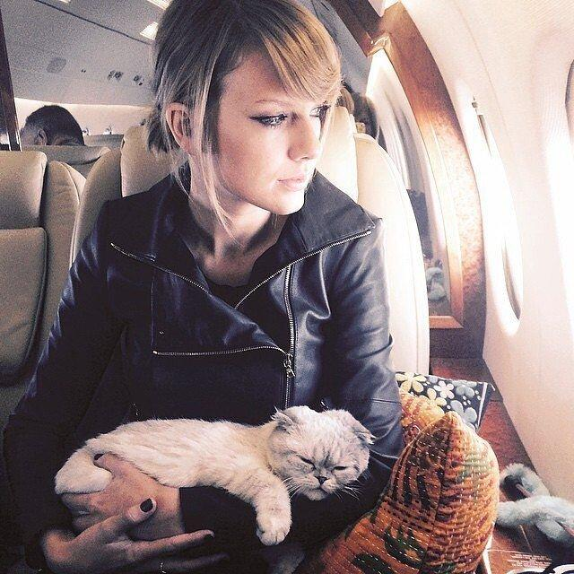 For noted cat lady Taylor Swift, home is where her cats are, which is why Meredith Grey makes a <em>purr-</em>fect travel companion.