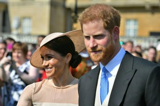 Britain's Prince Harry and his new wife Meghan will have wide appeal in the Commonwealth, the chief executive of the Commonwealth Games believes