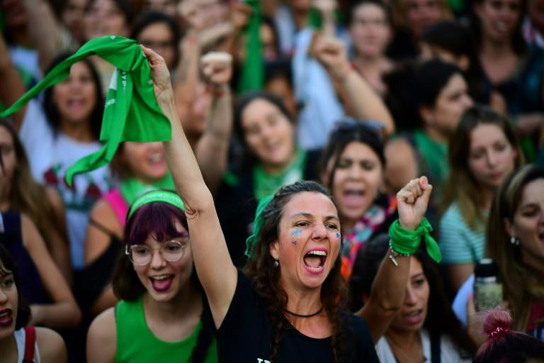 Activists have been buoyed by recent pledges by President Alberto Fernandez to prioritize a new bill legalizing abortion in Argentina (AFP Photo/RONALDO SCHEMIDT)