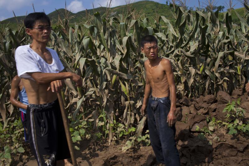 In this Monday, Aug 13, 2012 photo, North Korean men stand next in a field which was damaged by July flooding in Songchon County, North Korea. Twin typhoons are renewing fears of a humanitarian crisis in North Korea, where poor drainage, widespread deforestation and fragile infrastructure can turn even a routine rainstorm into a catastrophic flood. (AP Photo/David Guttenfelder)