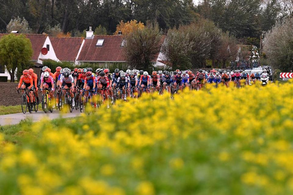 DE PANNE BELGIUM  OCTOBER 20 Peloton  Landscape  during the 3rd Driedaagse Brugge  De Panne 2020 Women Classic a 1563km race from Brugge to De Panne  AG3daagse  on October 20 2020 in De Panne Belgium Photo by Luc ClaessenGetty Images