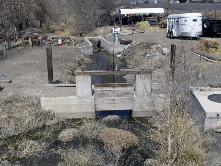 This Thursday, March 18, 2021 photo shows horses a small diversion canal on Canal Drive connected to the main Truckee Canal built in 1905 to provide water for irrigation in Fernley, Nev.. The town founded by pioneers lured to the West a century ago with the promise of free land and cheap water is suing the U.S. government over plans to renovate the earthen irrigation canal that burst and flooded nearly 600 homes in Fernley in 2008. (AP Photo/Scott Sonner)