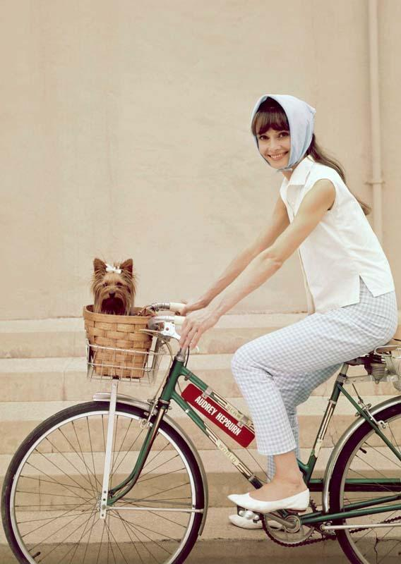 """<div class=""""caption-credit""""> Photo by: londoncyclechic.blogspot.com</div>Audrey Hepburn+Yorkie-in-a-basket+bicycle. What more inspiration to hit the road do you need?"""