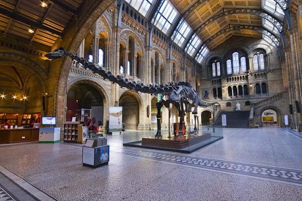 Supporters plead for dinosaur Dippy