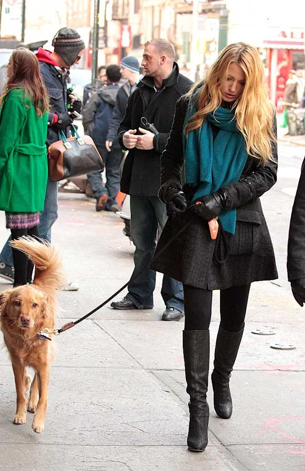 """When you're dating a guy with a dog, you better treat that pup like it's your own! That's exactly what Blake Lively has been doing with her new beau Ryan Reynolds' Golden Retriever Baxter. In January, she brought the K-9 to the set of """"Gossip Girl"""" on Manhattan's Lower East Side and took him for a walk in between shooting her scenes. Now that's a good stepmom!"""