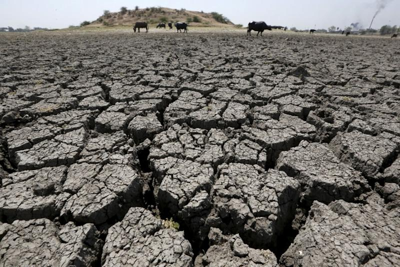 India's Longest Drought: 41-month-long Dry Spell From 2015-18 Was Longest in 150 years, Finds Study