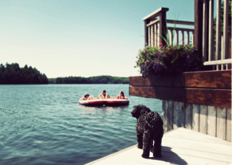 While many millennials are looking at buying condos in the city, the better buy may be in cottage country. (Getty)