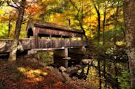 <p>Located along the Connecticut River, East Haddam is another great town for leaf-peeping during the fall season. Don't forget to explore Devil's Hopyard State Park, where you'll find beautiful covered bridges like this one.</p>