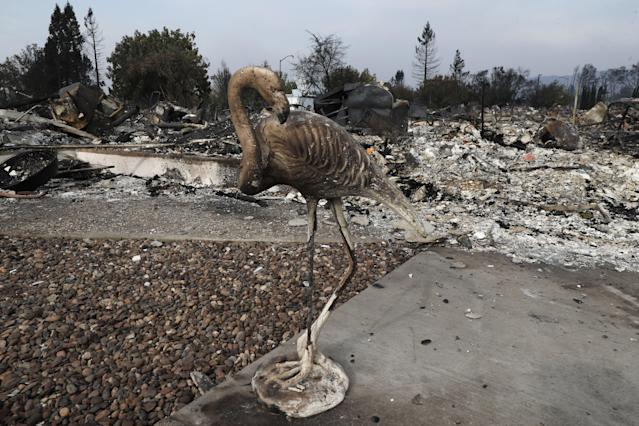 <p>A burned lawn with a flamingo ornament are seen in front of a destroyed home in Santa Rosa, Calif., Oct. 10, 2017. (Photo: John G. Mabanglo/EPA-EFE/REX/Shutterstock) </p>