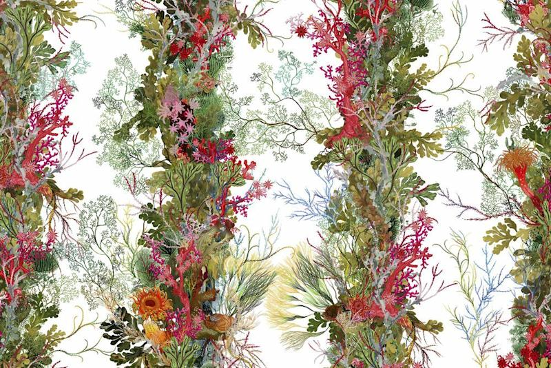 Photo credit: 'Seaweed Column' wallpaper in 'White' from the new 'Oceana' Collection, £140 per m