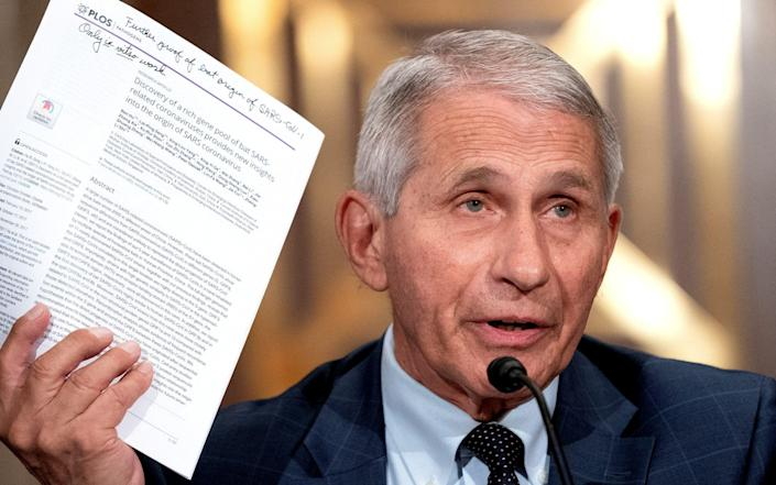 Dr Anthony Fauci, director of the National Institute of Allergy and Infectious Diseases, speaks during a Senate hearing in Washington D.C. on 20 July 2021 - Stefani Reynolds/Reuters