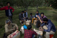 In this Sunday, Oct. 6, 2019 photo,Kashmiri farmers drink tea during a break at an orchard in Wuyan, south of Srinagar Indian controlled Kashmir. The apple trade, worth $1.6 billion in exports in 2017, accounts for nearly a fifth of Kashmir's economy and provides livelihoods for 3.3 million. This year, less than 10% of the harvested apples had left the region by Oct. 6. Losses are mounting as insurgent groups pressure pickers, traders and drivers to shun the industry to protest an Indian government crackdown. (AP Photo/Dar Yasin)
