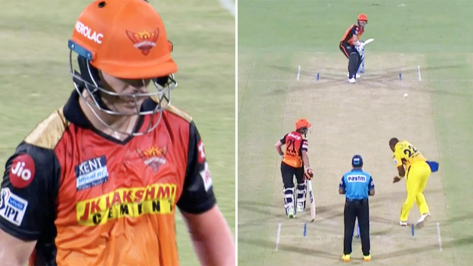 David Warner, pictured here in action for Sunrisers Hyderabad in the IPL.