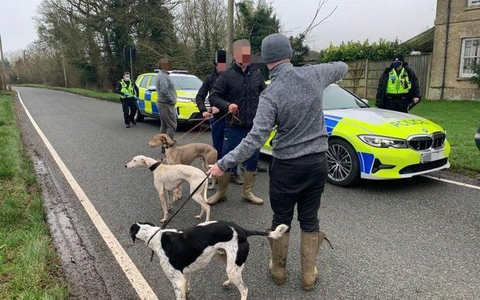 Over 40 hare coursing and poaching incidents were reported across Peterborough and Cambridgeshire in one week in January 2020 - Cambridgeshire Police