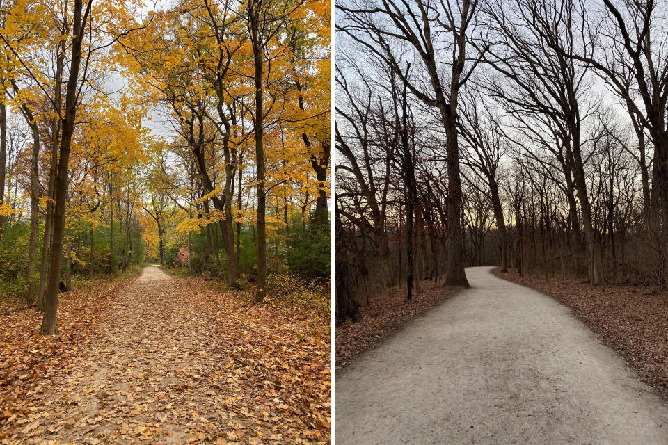 These two photos taken in the fall of 2020 by Cook County Medical Examiner Dr. Ponni Arunkumar of regular weekend walks have helped her get through one of the most challenging years of her career. Arunkumar says her photographs of one of the forest-preserve trails she walks each weekend with her husband are reminders that downtime isn't a luxury. It's a necessity for staying sharp amid the death surge in the county. (Dr. Ponni Arunkumar via AP)