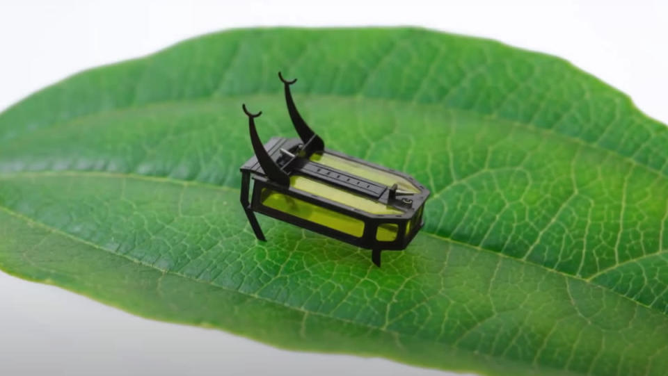 """A yellow and black """"robot beetle"""" standing on a green leaf."""