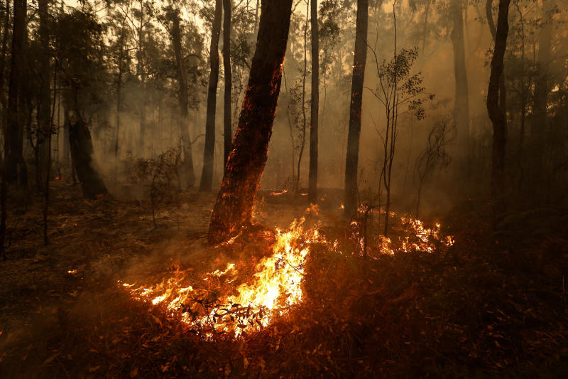 Small spot fires still burn between Orbost and Cann River along the Princes Highway, Australia.