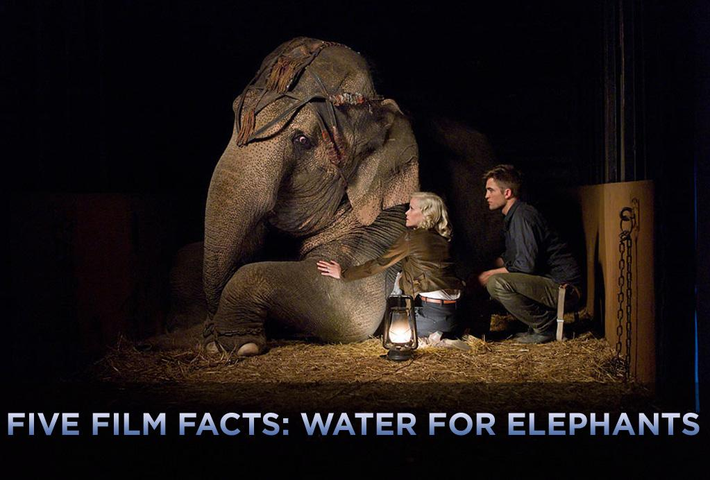 """Tai might not have her name above the title, but at 9,200 pounds, she's easily the biggest star of """"<a href=""""http://movies.yahoo.com/movie/1810161083/info"""">Water for Elephants</a>."""" That's right, she's an elephant and, over the years, has become the premiere pachyderm in Tinseltown.    She starred opposite Danny Glover in """"Operation Dumbo Drop,"""" outshined Bill Murray in """"Larger Than Life,"""" and made appearances in """"George of the Jungle,"""" Britney Spears's music video for """"Circus,"""" along with countless TV shows. And like many celebrities -- especially the ones with just a single name -- she caused a stir at a public event. In 2008, she was the center of attention at street artist Banksy's now-legendary L.A. debut -- as documented in """"Exit Through the Gift Shop"""" -- when she appeared painted in pink and gold. Critics called it art; PETA called it animal cruelty. A few years later, she made an appearance at Nicole Richie and Joel Madden's wedding.    And, like seemingly every other celebrity, she has a cause. She's auctioning off one of her own personal paintings and an autographed poster for """"Water for Elephants"""" on <a href="""" http://cgi.ebay.com/ws/eBayISAPI.dll?ViewItem&item=150591357792"""">eBay</a> to raise awareness of EEHV (Elephant endotheliotropic herpes virus), which can be lethal to baby elephants. And, of course, she has her own Twitter account. But one surmises that, like many A-list Twitter feeds, they are actually written by an assistant.    Click ahead and check out more fun facts from """"Water for Elephants."""""""