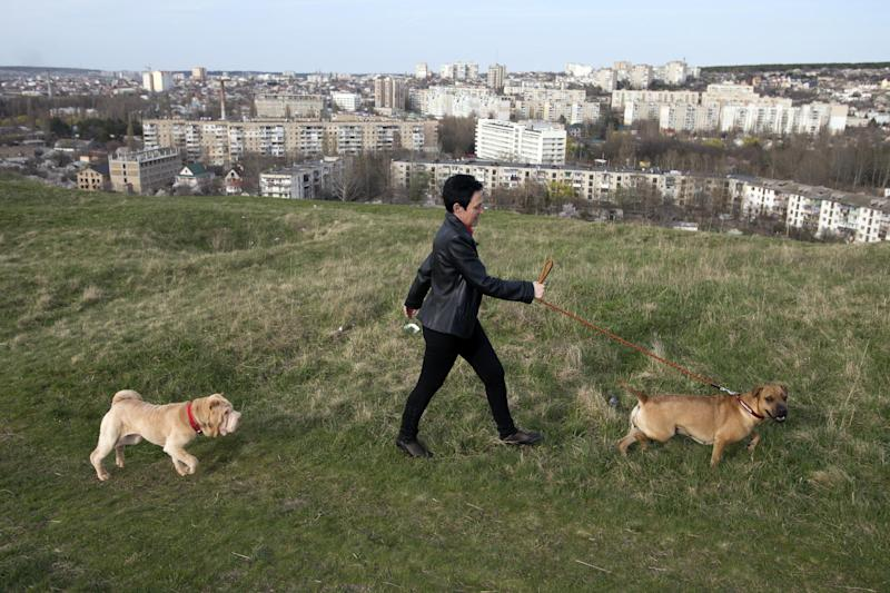 A woman walks her dogs on a hill in Simferopol, Crimea, Tuesday, March 25, 2014. Thousands of Ukrainian troops have began withdrawing from the Crimean Peninsula.(AP Photo/Pavel Golovkin)
