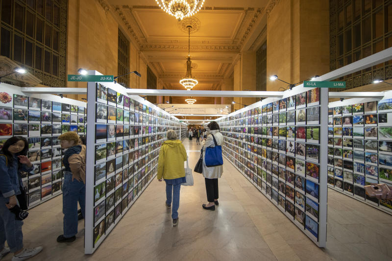 Rows and rows of wonderful photos on display were taken by shutterbugs nationwide. (Photo: Gordon Donovan/Yahoo News)