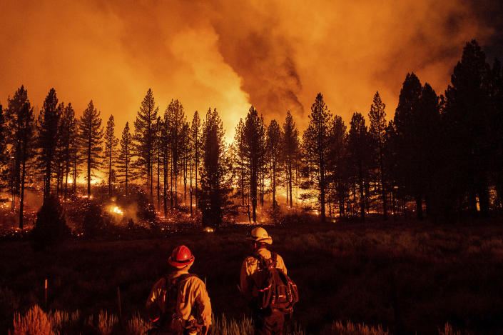 Firefighters monitor the Sugar Fire, part of the Beckwourth Complex Fire, as it burns at Frenchman Lake in Plumas National Forest, Calif., on Thursday, July 8, 2021. (AP Photo/Noah Berger)