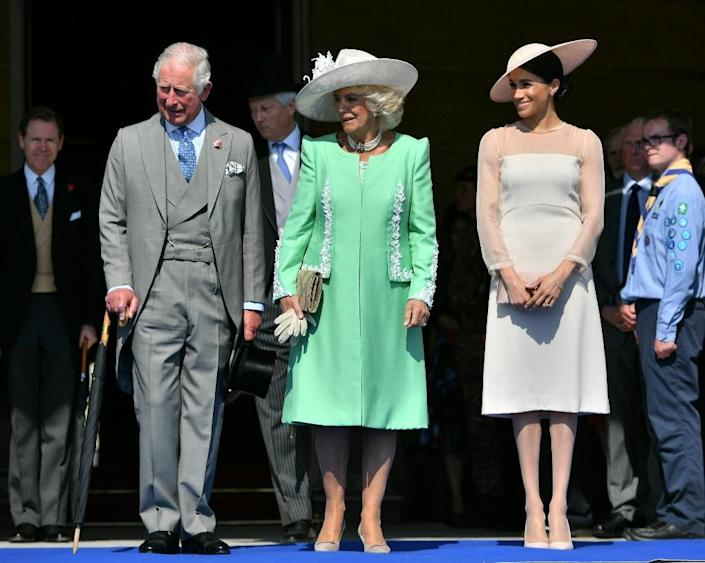 """Formal attire were de rigeur for Prince Charles's 70th birthday garden party at Buckingham Palace in May - but she still manages to push the """"boundaries of the royal dress code,"""" says Elizabeth Vollman, who manages the website Meghan's Fashion (AFP Photo/Dominic Lipinski)"""