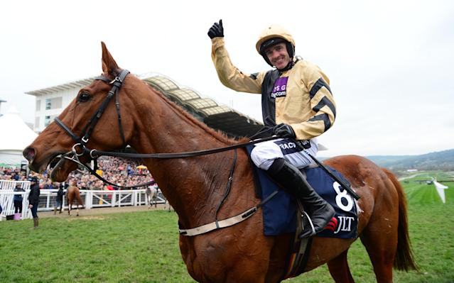 <span>Yorkhill will be a contender at next year's Cheltenham Gold Cup</span> <span>Credit: racingfotos.com/REX/Shutterstock </span>