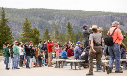'Not a mask in sight': thousands flock to Yellowstone as park reopens