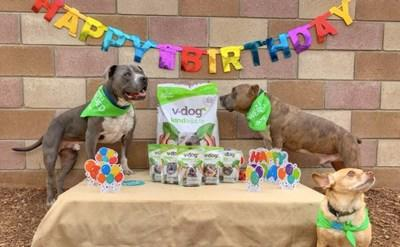 Leading plant-based dog food company v-dog celebrates its 15th birthday during the fourth annual Vegan Dog Month in July.
