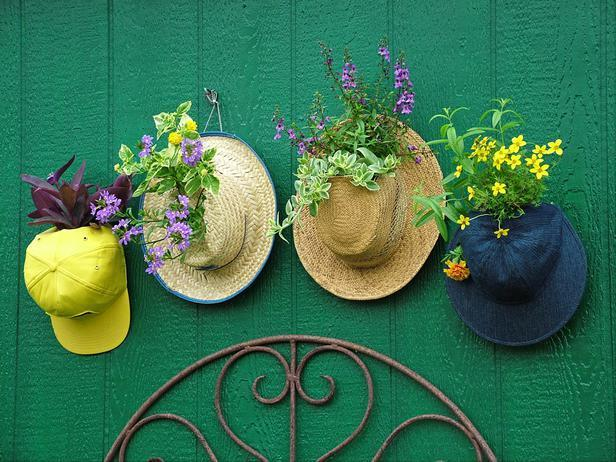 """<div class=""""caption-credit"""">Photo by: Nancy Ondra</div><div class=""""caption-title"""">Hats Off</div>Give tired or tattered old hats new life as a hanging garden. Baseball hats make instant pot covers: Simply open the sizing tabs in back, slip the opening around the base of the plant and snap the tabs closed again. On straw, felt or fabric hats, cut a hole into the front or top and gently feed the plant stems through the hole."""