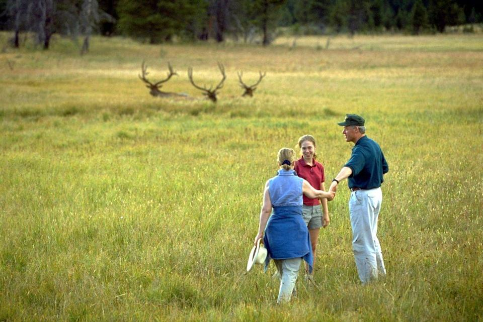 <p>The Clintons spy some elk on a family vacation in 1996.</p>