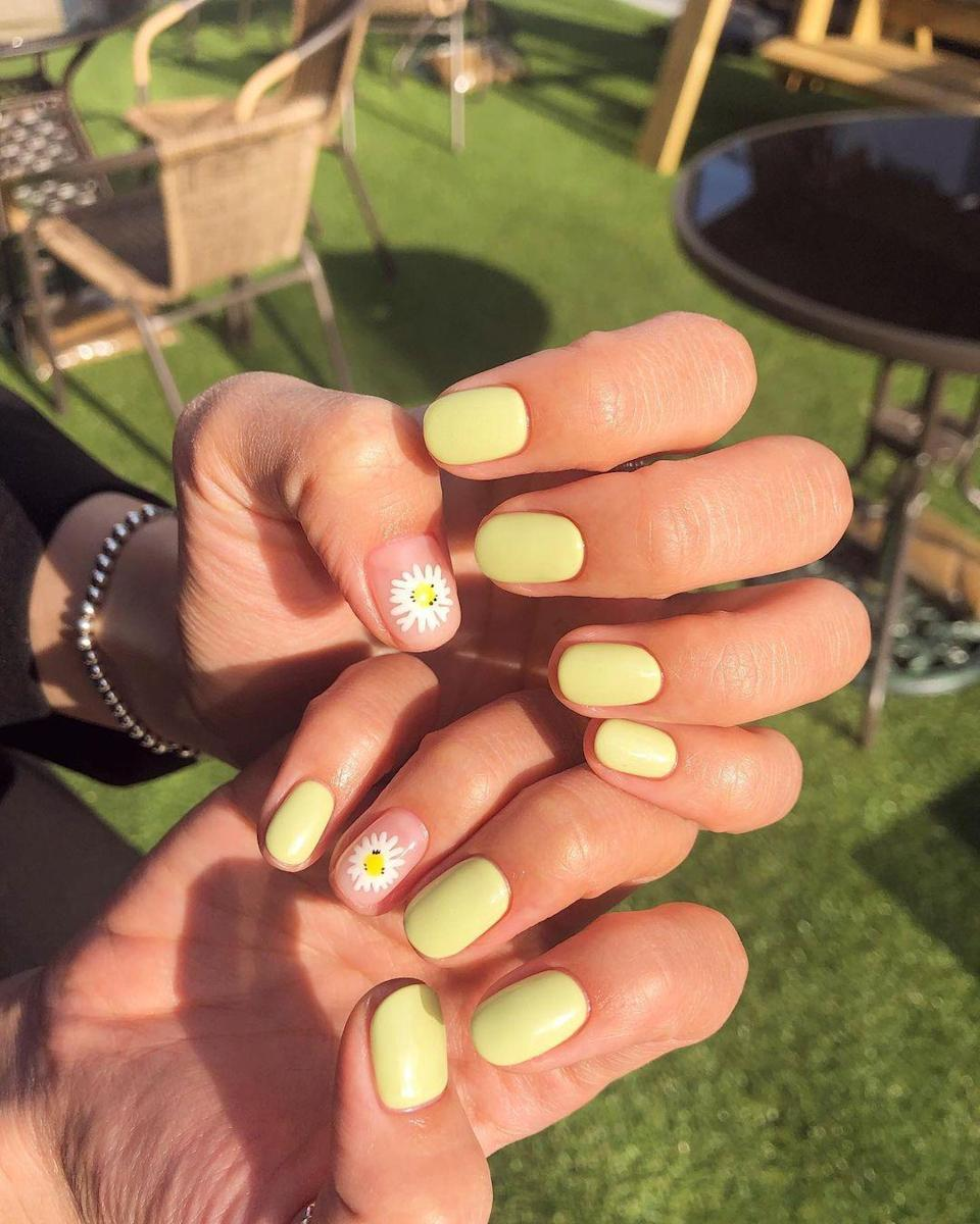 Classic daisies and pastel yellow are a match made in heaven.