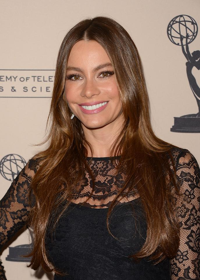 UNIVERSAL CITY, CA - AUGUST 20:  Actress Sofia Vergara attends The Academy Of Television Arts & Sciences' performers peer group cocktail reception held at the Sheraton Hotel on August 20, 2012 in Universal City, California.  (Photo by Jason Merritt/Getty Images)