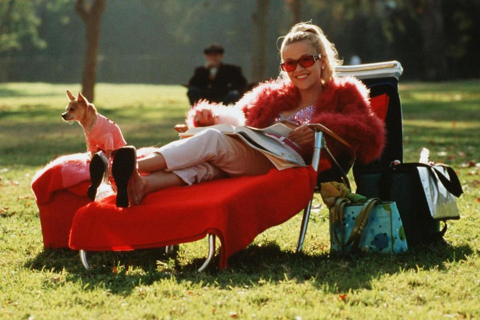 Reese Witherspoon and Moonie in 'Legally Blonde', 2001: Rex Features