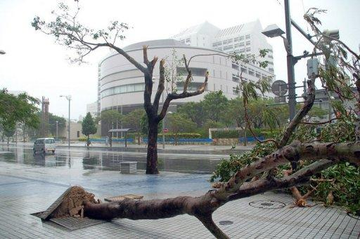 An uprooted tree lies on the pavemen as typhoon Man-Yi closes in on Naha city, in Okinawa in 2007. Typhoon Bolaven, packing winds of up to 252 kilometres (157 miles) per hour, was some 90 kilometres east of Okinawa's capital Naha on Sunday, slowly moving north-northwest, the Japan Meteorological Agency said