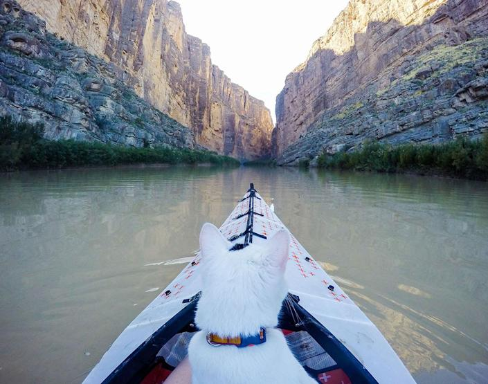<p>Santa Elena Canyon in Big Bend National Park – one side of the river is Mexico, the other side, the United States. Big Bend National Park is in southwest Texas and includes the entire Chisos mountain range and a large swath of the Chihuahuan Desert. (Photo: Our Vie / Caters News) </p>