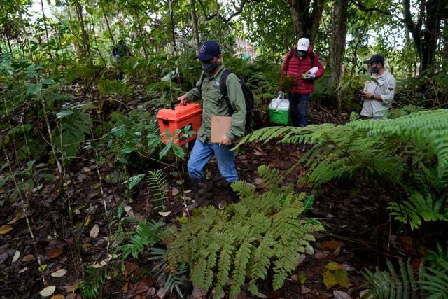 Scientists walk with locals as they collect plant samples