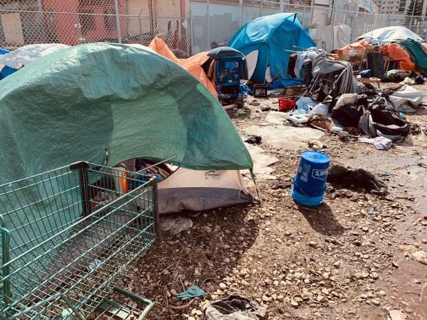 Homeless camps, like this one in Edmonton, create conflicts in Lac La Biche County. The county and the Métis Nation of Alberta are partnering on a temporary camp with transportation, garbage and porta-potties. (David Bajer/CBC - image credit)