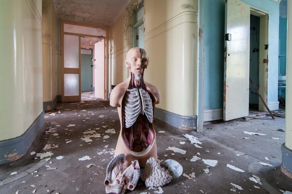 A model used to teach human anatomy sitting in a trashed and abandoned hallway. Source: Media Drum World/Australscope