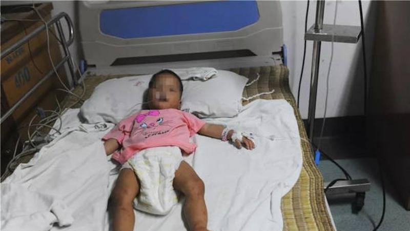 Toddler survives four days lost in the wilderness in China