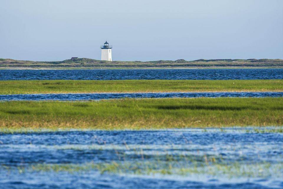 <p>The lighthouse stands tall above the mix of green and blue on another clear day on the Cape.</p>
