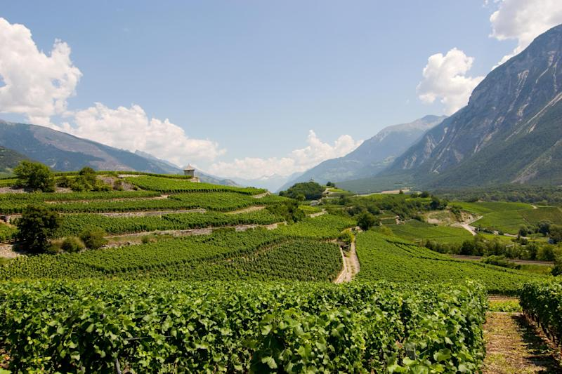 Valais is known as the 'California of Switzerland' - Getty