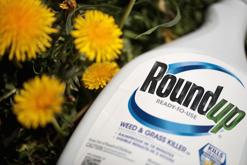 CHICAGO, ILLINOIS - MAY 14: Roundup weed killer is shown on May 14, 2019 in Chicago, Illinois. A jury yesterday ordered Monsanto, the maker of Roundup, to pay a California couple more than $2 billion in damages after finding that the weed killer had caused their cancer. This is the third jury to find Roundup had caused cancer since Bayer purchased Monsanto about a year ago. Bayer's stock price has fallen more than 40 percent since the takeover. (Photo Illustration by Scott Olson/Getty Images)
