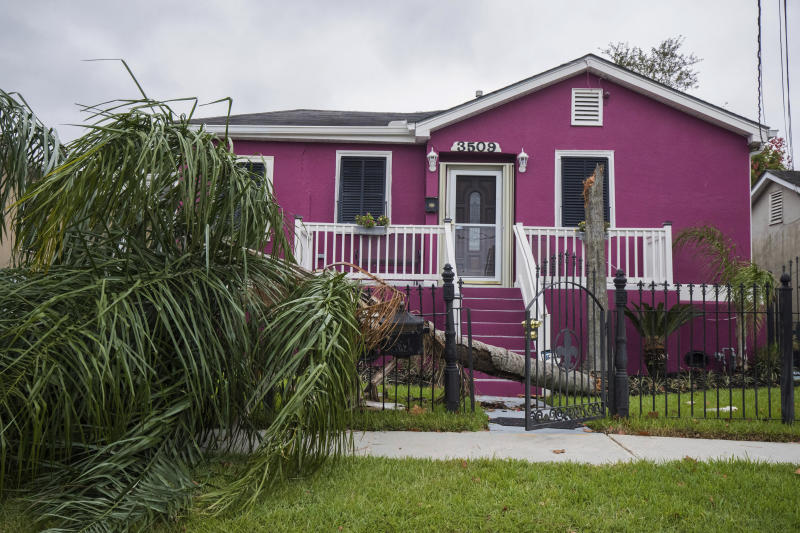 A palm tree takes out a fence of a home in the Leonidas neighborhood in New Orleans on Saturday, Oct. 26, 2019, after a storm system called Tropical Storm Olga went through the area. (Sophia Germer/The Advocate via AP)
