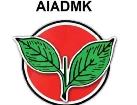 TN woman injured trying to avoid AIADMK flagpole