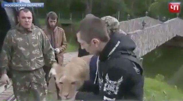 Local reports state the animals were found 'moaning and groaning' with hunger when volunteers found them. Picture: NTV